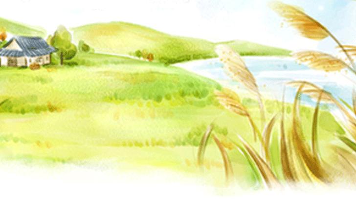 意外においしい、食べられる身近な野草