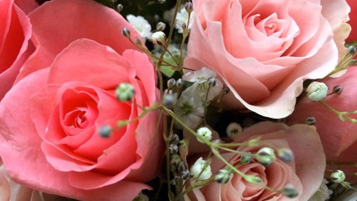 淡いピンクの花束に感謝や祝いの気持ちをこめて